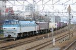 DSC_9595-2012-12-16.jpg