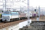 DSC_9621-2012-12-16.jpg