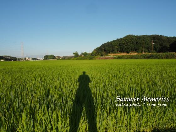 2012natsuphoto03