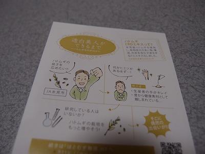 s-PC038403.jpg