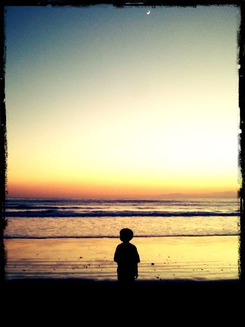 夕日とコゾウ