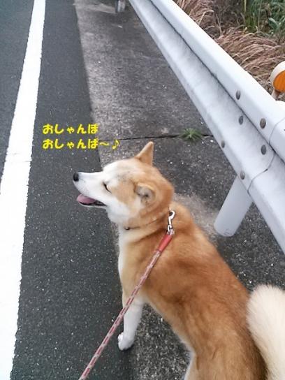 NCM_0717うめ20140105