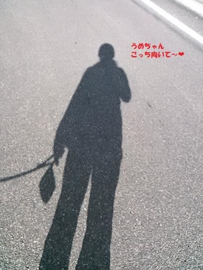NCM_0743くまママ20140105