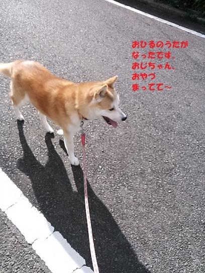 NCM_0747うめ20140105