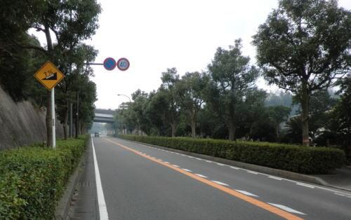 20140103_hatuhasiri_14