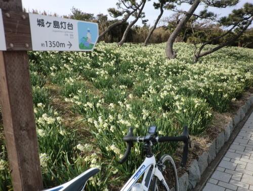 20140125_miura_18