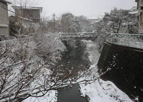 20140208_snow_1