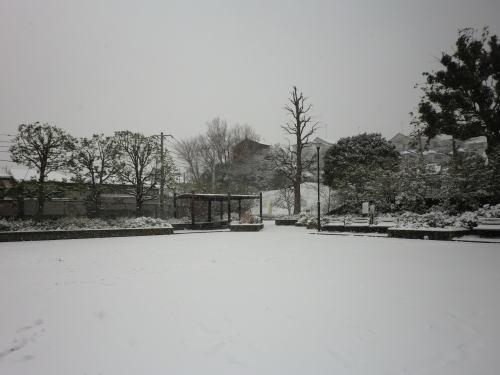 20140208_snow_2