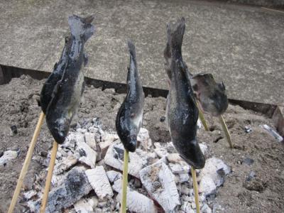 鮎の塩焼きの始まり