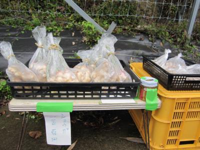 生姜の無人販売、100円