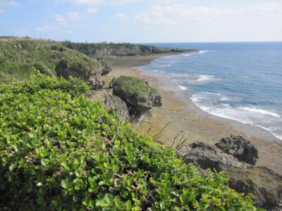 穏やかな波と断崖