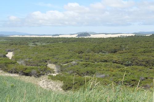 オレゴン砂丘