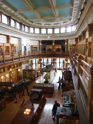 レッドパス博物館