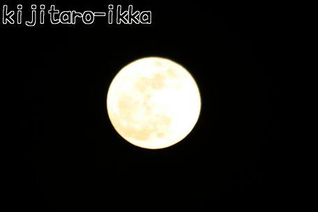 IMG_8604満月