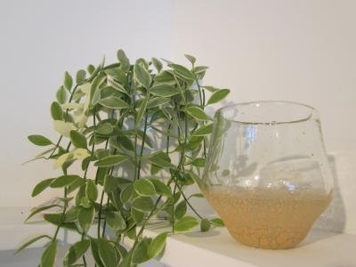桃土タルグラス