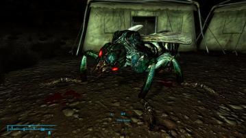FalloutNV 2012-08-14 05-46-49-133