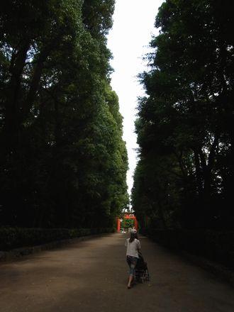 2012-06-24 井草八幡宮 (21)