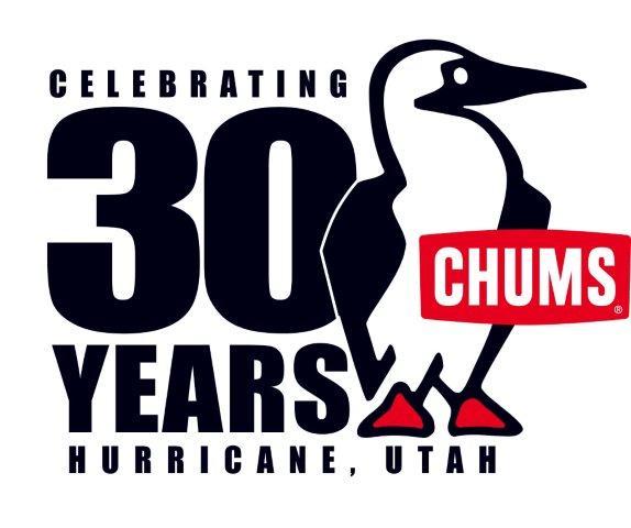 30th_Anniversary_logo_USAASIA.jpg