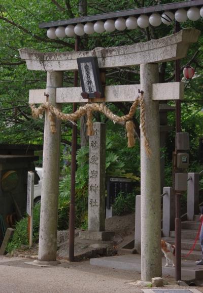 527_3愛宕神社