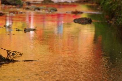 1125_5赤い川