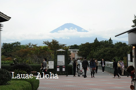 富士山も見えます