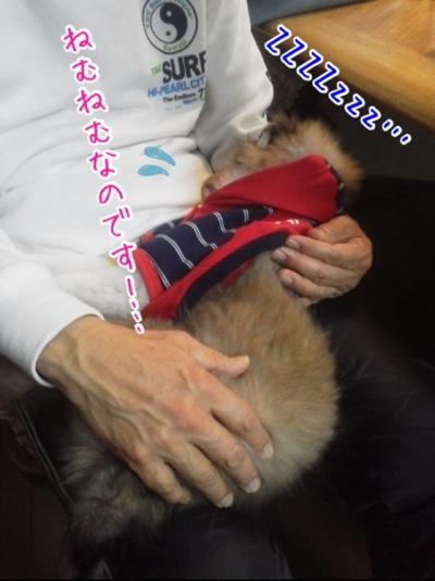 fc2blog_20140114152337a6d.jpg