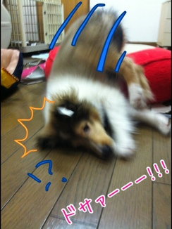 fc2blog_2014012417353267b.jpg