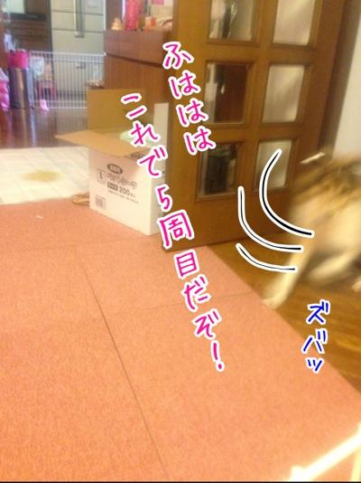 fc2blog_20140210161937424.jpg
