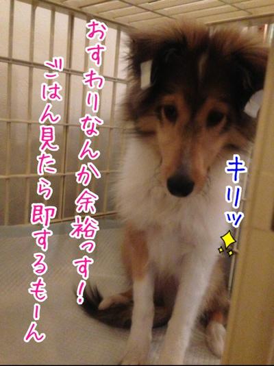 fc2blog_20140215184917d48.jpg