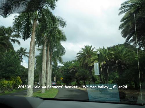 201305 Haleiwa Farmers Market-WAIMEA VALLEY