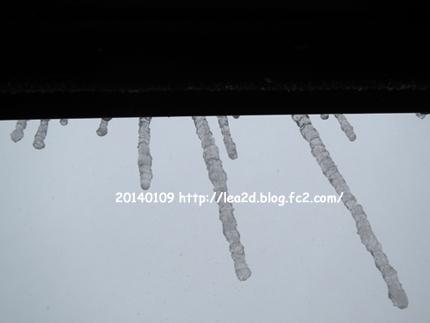 20140109snow2.jpg