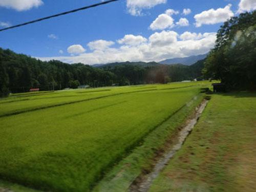 新幹線の車窓から①