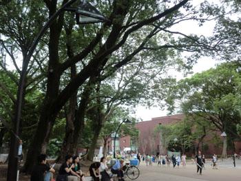 CIMG5216東京都美術館
