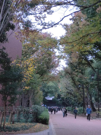 2012-11-13上野公園②
