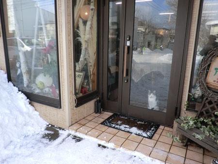 2012-12-29雪景色②
