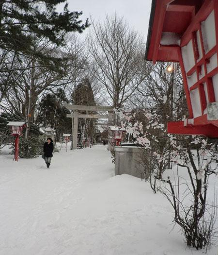 2013-1-2初散歩④