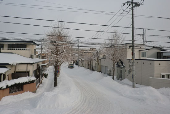 2013-1-9雪景色
