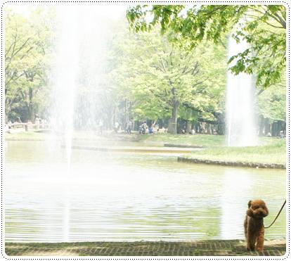 20120430_dogcafe5.jpg