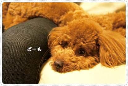 20120502_relax1.jpg