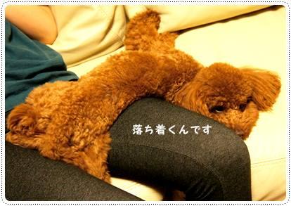 20120502_relax2.jpg