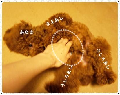20120518_point3.jpg