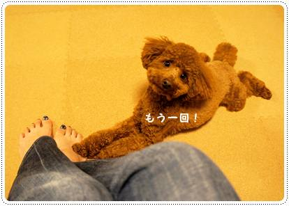20120702_med3.jpg