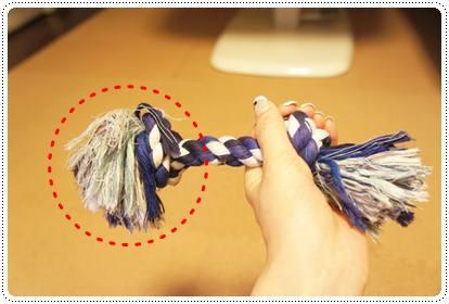 20120709_rope1.jpg