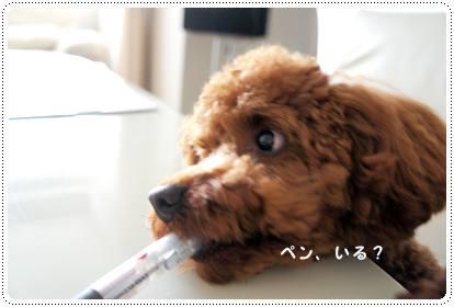 20120718_guest2.jpg