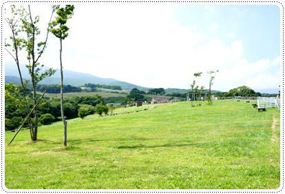 20120808_nasu10.jpg