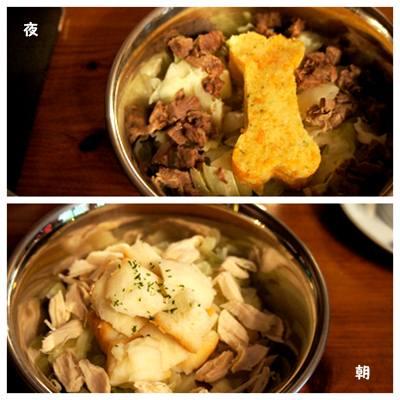 20120810_nasu10.jpg