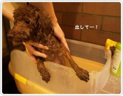 20120810_nasu7.jpg