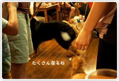 20120810_nasu9.jpg