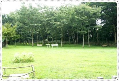 20120815_cafe2.jpg