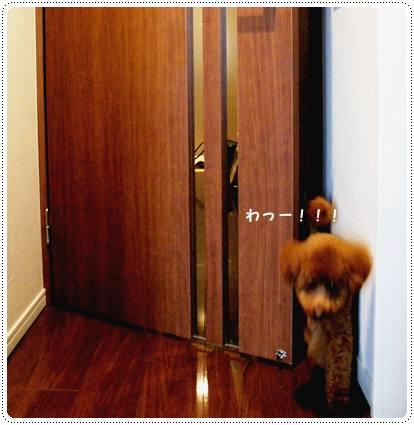 20120817_door1.jpg
